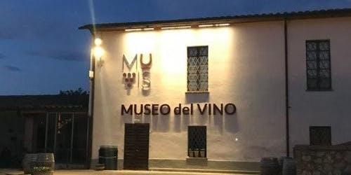 Wine Museum MUVIS