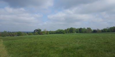 1. Wooded Hills to Ingrebourne Valley