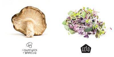 (ENGLISH) Visit of a mushroom and microgreens urban farm !