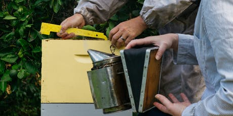Backyard Beekeeping Workshop - Mayfield tickets