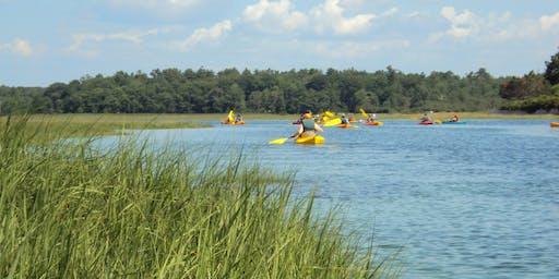 Kayaking on the Little River Estuary