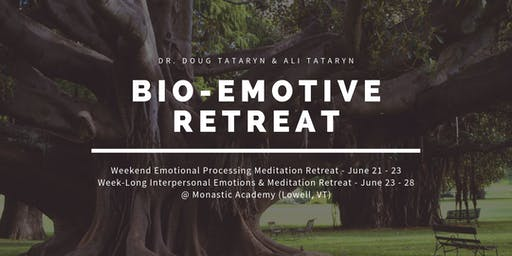 Bio-Emotive Emotional Processing Meditation Retreat @ MAPLE, June 21 - 23