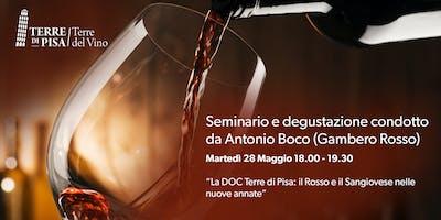 La DOC Terre di Pisa: il Rosso e il Sangiovese nelle nuove annate - Antonio Boco - Gambero Rosso