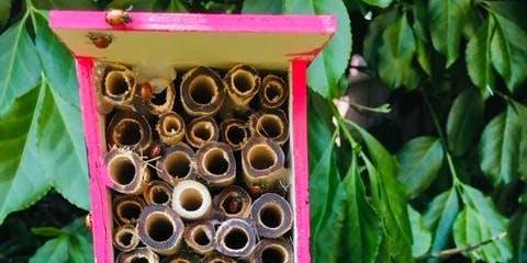 Moana Kids Club: Ladybug House