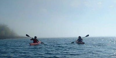 Guided Sea Kayak Tour (Noon)