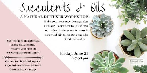 Succulents & Oils