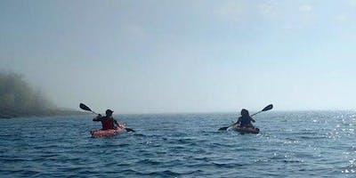 Guided Sea Kayak Tour (Evening)