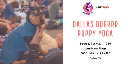 Dallas DogRRR Puppy Yoga at Larry North Fitness