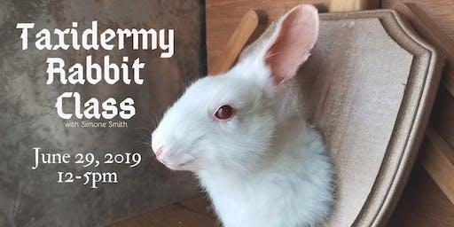 Taxidermy Rabbit Class