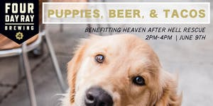 Puppies, Beer & Tacos