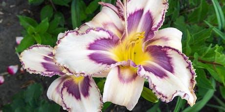 An OG Plants Fair June tickets