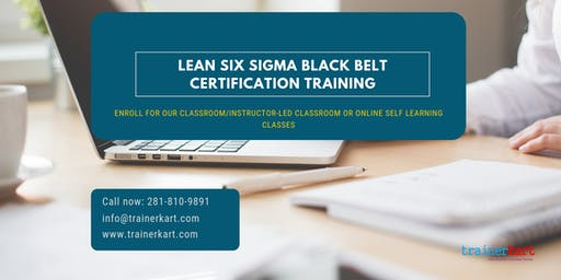Lean Six Sigma Black Belt (LSSBB) Certification Training in ORANGE County, CA