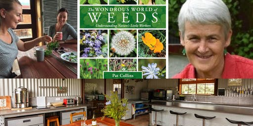 Weeds and their uses with Pat Collins