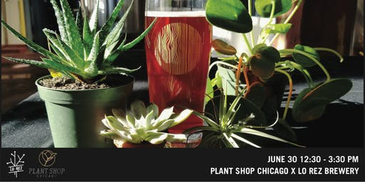 Lo Rez Brewery x Plant Shop Chicago