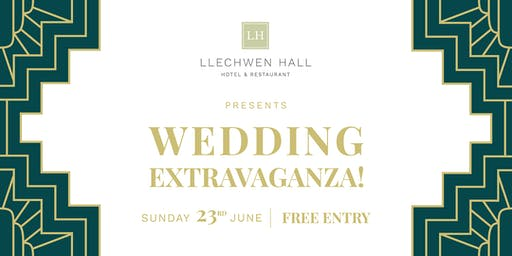 Llechwen Hall Wedding Extravaganza