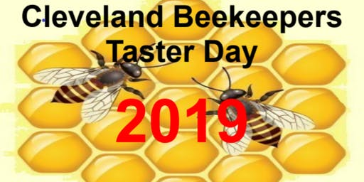 Beekeeping Taster Day 2019