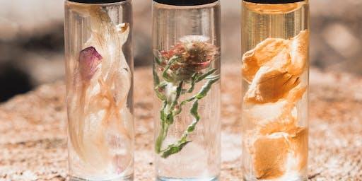 Herbal Perfume Workshop