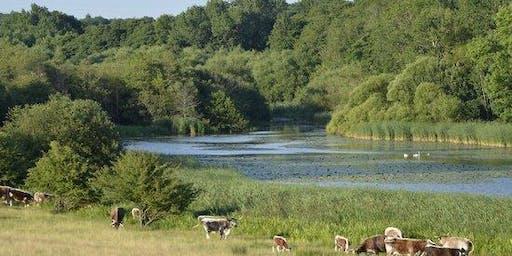 Rewilding at Knepp Estate - A LI 90 Event by LI South East