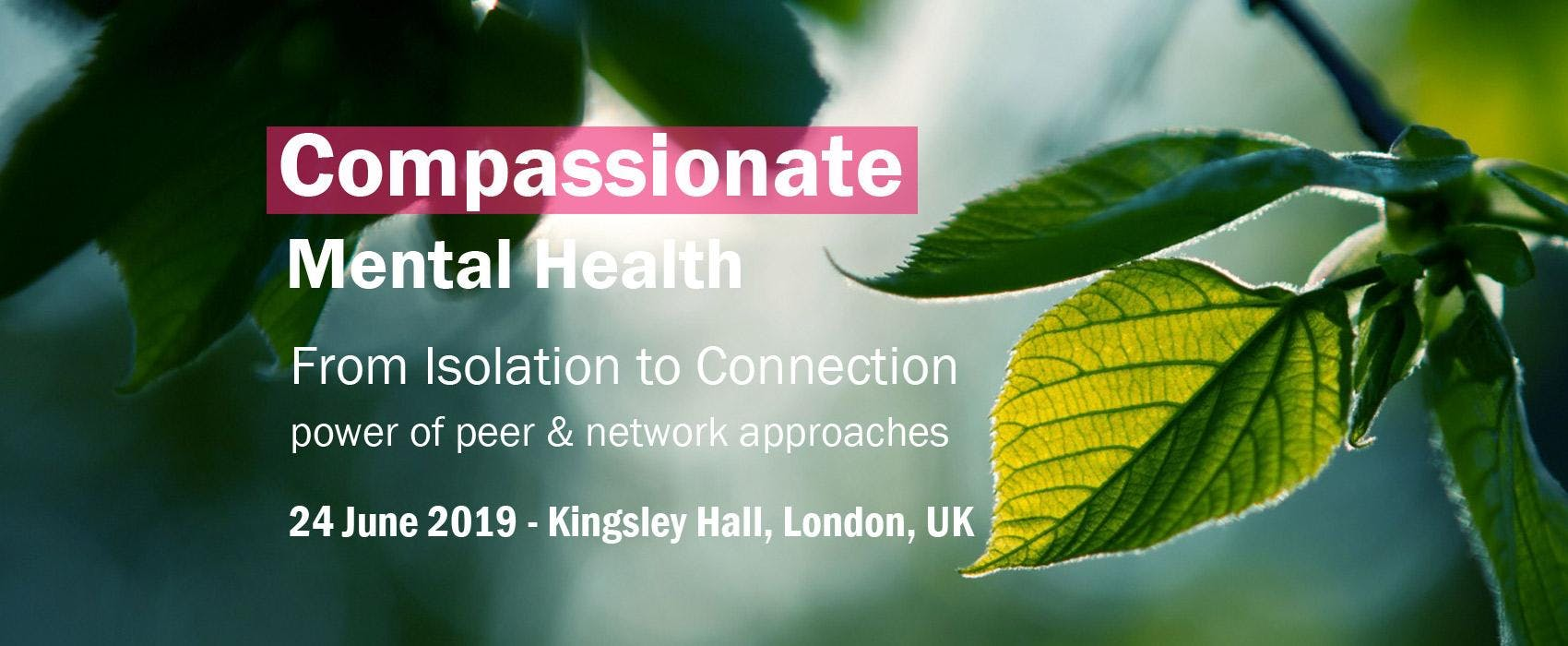 From Isolation to Connection - power of peer & network approaches
