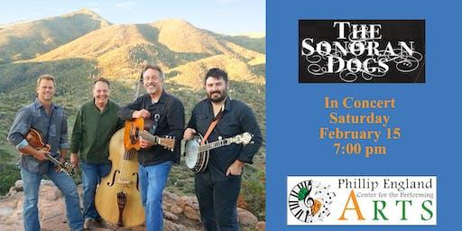Sonoran Dogs Bluegrass