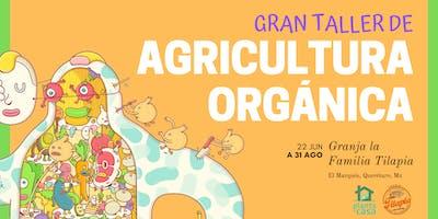 Gran taller de agricultura orgánica