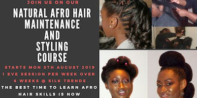 Natural Afro Hair Maintenance and Styling Masterclass (6 weeks) - E