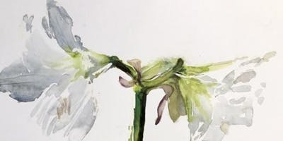 Botanical Watercolours with Jenny Hunter