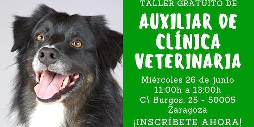 Taller gratuito de Auxiliar de Clínica Veterinaria 26 de junio