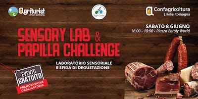 Sensory Lab & Papilla Challenge