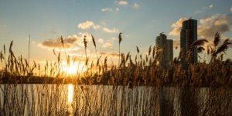 Dawn Chorus Wildlife Watch at Woodberry Wetlands with Breakfast tickets
