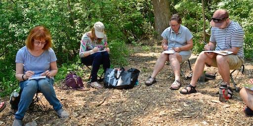 Wilket Creek Ravine Sketching Tour 4