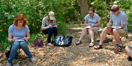Wilket Creek Ravine Sketching Tour 7 tickets