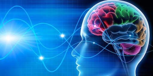 Geld Verdienen met mooie Neuro-Marketing en Soepele sales