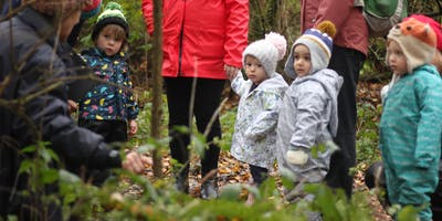 Sevenoaks Nature Tots (afternoon sessions)