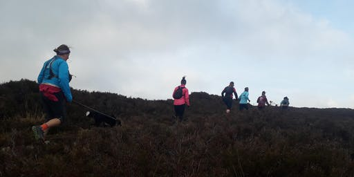 Absolute Beginner Trail Run