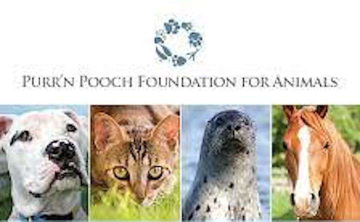 Purr'n Pooch Foundation for Animals Summer Gala image