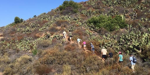 Fitness Hike at Dilley