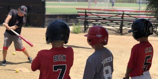 Viking Youth Baseball Camp