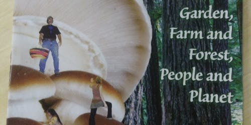 Growing with Fungi