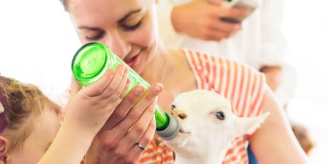 Lively Run Dairy Baby Goat Cuddling and Bottle Feeding Tour  tickets