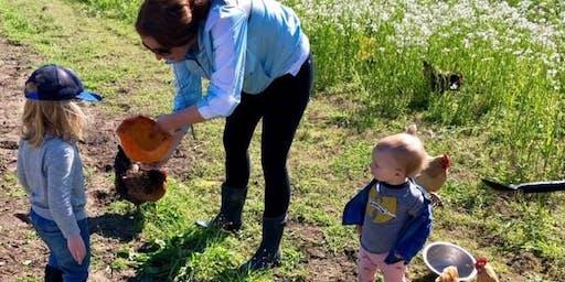 Tasting Time on the Farm -- Tea Time on the Farm!