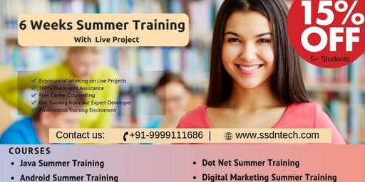 6 Weeks Summer Training in Gurgaon(Paid)