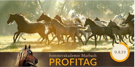 SOMMERAKADEMIE PFERDEFOTOGRAFIE - Profitag Tickets