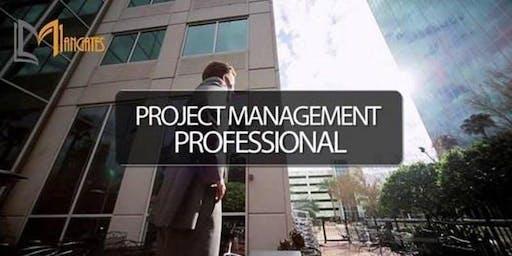 PMP® Certification Training in Washington D.C. on Nov 18th - 21st, 2019