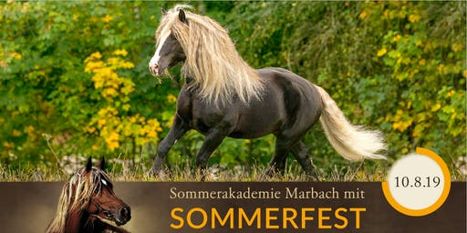 SOMMERAKADEMIE PFERDEFOTOGRAFIE - mit Sommerfest