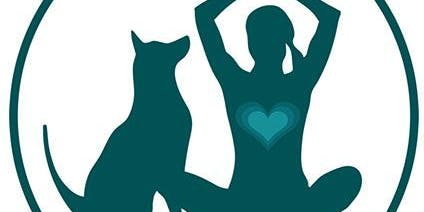 Relax Dog Class - helping your dog emotionally