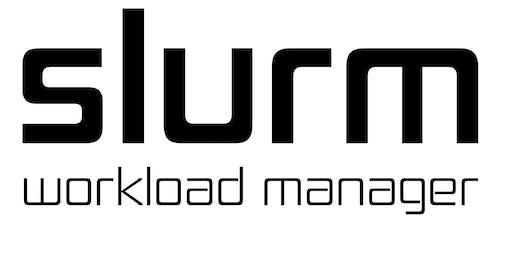 Slurm User Group 2019