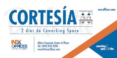 Nex Offices Coworking Space Cortesía