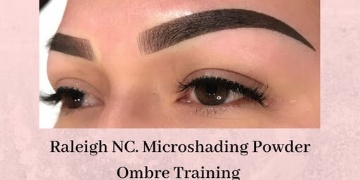 Effortless 10 Microshading Ombre Powder Raleigh Training June 23