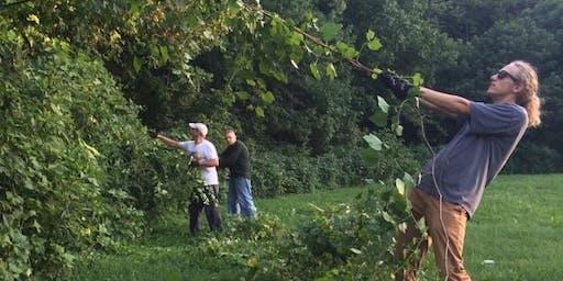 Volunteer Event: Cherokee Park